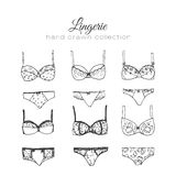Vector lingerie set. Sexy underwear design. Outline hand drawn illustration. Bras and panties doodle. Stock Photos