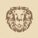 Vector lion head in engraving style Royalty Free Stock Images
