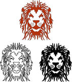 Vector Lion Stock Images