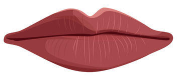Vector lips Royalty Free Stock Image