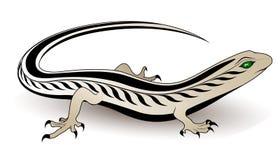 Vector lizard Stock Photos