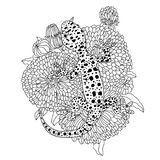 Vector lizard realistic and detailed illustration for a coloring book for adults. Hand drawn coloring page Stock Photos