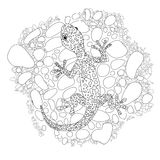 Vector lizard realistic and detailed illustration for a coloring book for adults. Hand drawn coloring page Stock Image