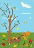 vector lo scoiattolo Immagini Stock Libere da Diritti