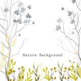 Vector lo sfondo naturale dell'acquerello con le foglie, l'erba, i fiori e gli alberi su fondo bianco Fotografia Stock Libera da Diritti