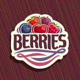 Vector logo for Berries. Cut sign with fresh strawberry, red gooseberry, healthy blueberry, cherry berry, ripe raspberry on geometric background, veg mix label Stock Photos