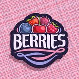 Vector logo for Berries. Cut sign with fresh strawberry, red gooseberry, healthy blueberry, cherry berry, ripe raspberry on geometric background, veg mix label Royalty Free Stock Image