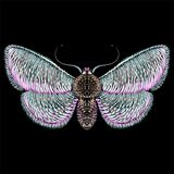 The Vector logo butterfly for tattoo or T-shirt design or outwear. Cute print style butterfly background.
