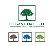 Vector logo design illustration of oak tree logo, wise and strong, house property firm, green home stay resort. This is vector logo design illustration perfectly Royalty Free Stock Photos