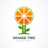 Vector logo design template. Orange tree illustration. Garden, o Royalty Free Stock Images