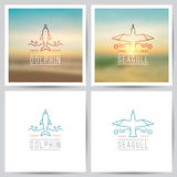 Vector logo, dolphin and seagull Stock Image
