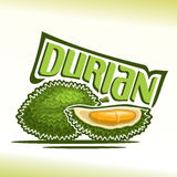 Vector logo Durian Fruit Royalty Free Stock Images