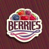 Vector Logo For Berries Stock Photos