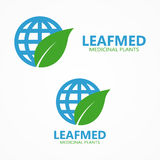 Vector logo leaf with globe Stock Photography