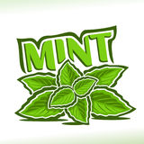 Vector logo for Mint herb. Label with green leaves of peppermint, sprig of fresh spearmint, icon with title text - mint for natural products with menthol Stock Images