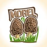 Vector logo Morel Mushrooms Stock Image