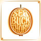 Vector logo for Sea Buckthorn Stock Photo