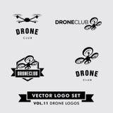 Vector Logo Set del abejón Fotografía de archivo libre de regalías