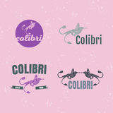 Vector logo set with Hummingbird. The Hummingbird as main element of logotypes Stock Photos