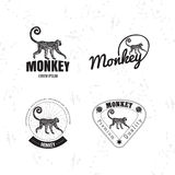 Vector logo set with Jungle Monkey Stock Images