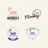 Vector logo set with Jungle Monkey Royalty Free Stock Images