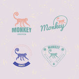Vector logo set with Jungle Monkey Stock Image