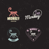 Vector logo set with Jungle Monkey Royalty Free Stock Photo