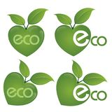 ECO text on a concept in the ecological colors. Vector logo templates and elements related to ecology, environment, nature Royalty Free Stock Photography