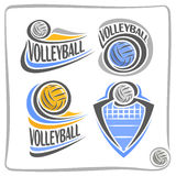 Vector logo Volleyball Ball Stock Photography
