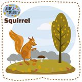 Cute squirrel cartoon. Wildlife. Wild animal. Vector illustration. Vector logo. wildlife Wild wolf Royalty Free Stock Photography
