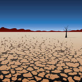 Vector lonely tree in dry desert Stock Photos