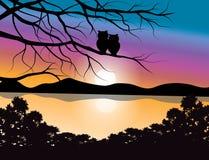 Vector los ejemplos, búho con una puesta del sol hermosa Fotografía de archivo