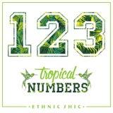 Vector los números tropicales para las camisetas, los carteles, la tarjeta y otra las aplicaciones Fotografía de archivo libre de regalías