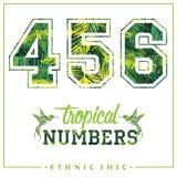 Vector los números tropicales para las camisetas, los carteles, la tarjeta y otra las aplicaciones Fotos de archivo