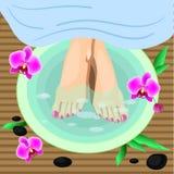 Vector los pies femeninos del ejemplo en el procedimiento de la pedicura del balneario Piernas, flores y piedras Foto de archivo libre de regalías