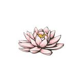 Vector lotus flower. Stock Photo