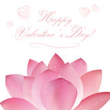 Vector lotus flowers Stock Image