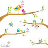 Vector lovely Birds on branch Royalty Free Stock Photos