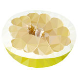 Vector low poly half of pomelo Royalty Free Stock Photos
