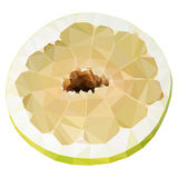 Vector low poly half of pomelo Stock Image