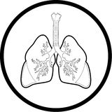 Vector lungs icon Stock Image
