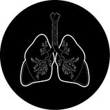 Vector lungs icon Stock Photography