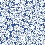 Vector mão sem emenda o teste padrão floral decorativo natural tirado Ilustração Royalty Free