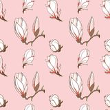 Vector magnolia flowers seamless pattern. Vector hand drawn magnolia flower seamless pattern - element for your design Stock Images