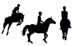 Vector man on horseback Stock Images