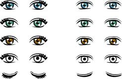 Vector Man and Woman eyes in different color Stock Photo