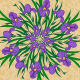 Vector mandala with iris flowers Royalty Free Stock Photography
