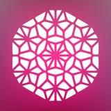 Vector Mandala Ornaments Illustration decorativa Imágenes de archivo libres de regalías