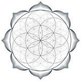 Vector mandala sacred geometry illustration Stock Photo