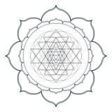 Vector mandala sacred geometry illustration Stock Image